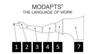 MODAPTS Logo